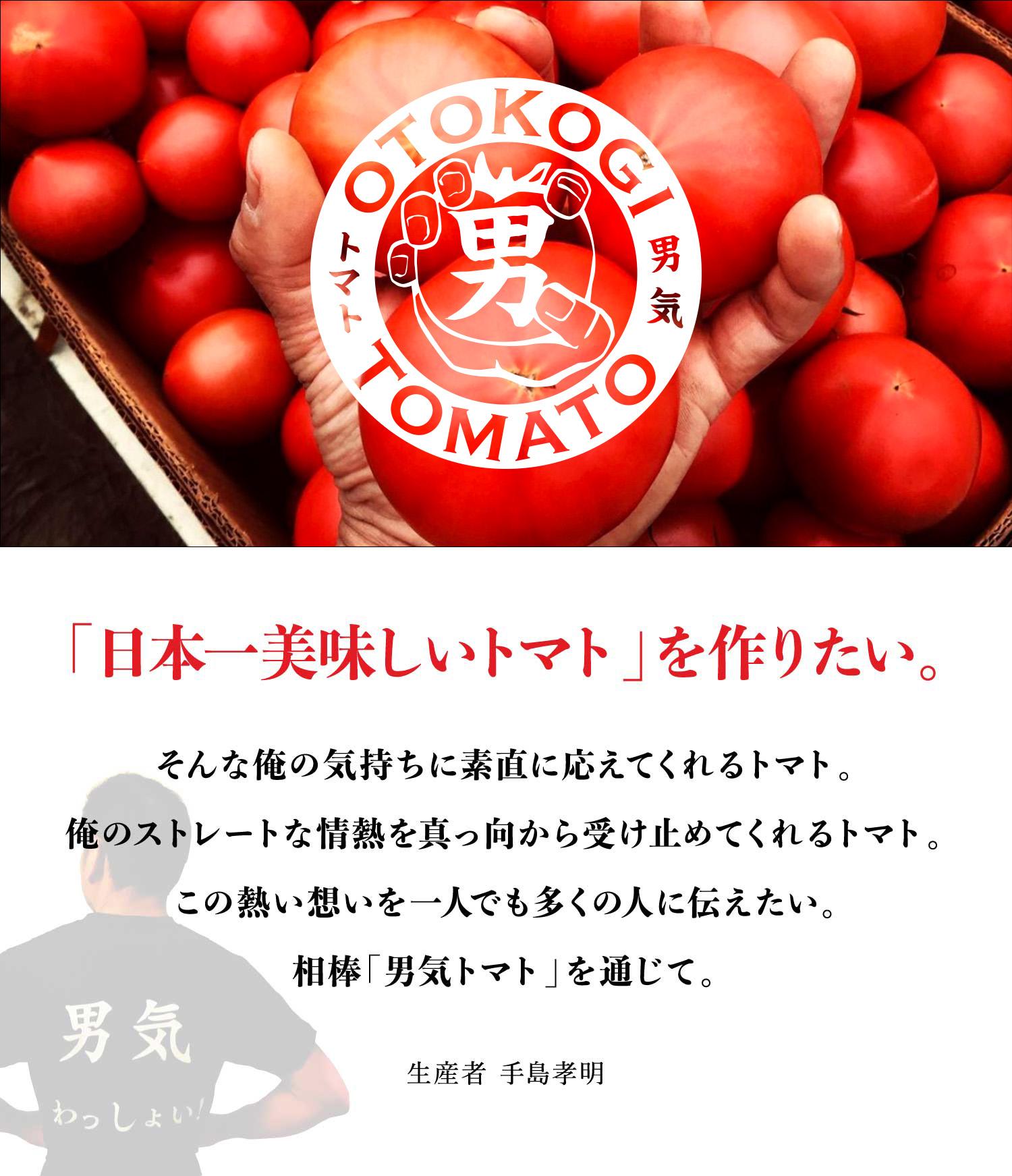「日本一美味しいトマト」を作りたい。そんな俺の気持ちに素直に応えてくれるトマト。俺のストレートな情熱を真っ向から受け止めてくれるトマト。この熱い想いを一人でも多くの人に伝えたい。相棒「男気トマト」を通じて。 - 生産者 手島孝明