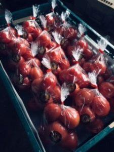 収穫後に綺麗に袋詰めされて、コンテナに入れられた男気トマト